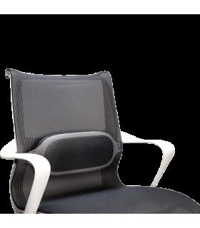 Suport ergonomic pentru spate I-Spire Series™ FELLOWES