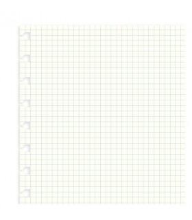 Rezerva hartie FILOFAX matematica 32 buc/set A4, compatibila cu agenda Notebook Filofax