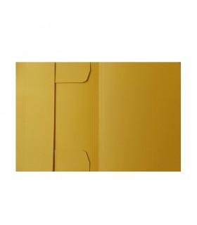 Dosar carton plic A4 ELBA