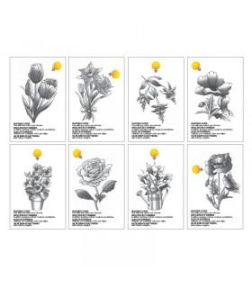 Carte de colorat Color Cards - Flori CHAMELEON