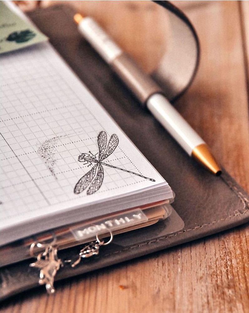 Rezerva hartie Quadrille 25 buc/set A5, Notepaper compatibila cu Agendele Organiser si cu Clipbook-urile FILOFAX
